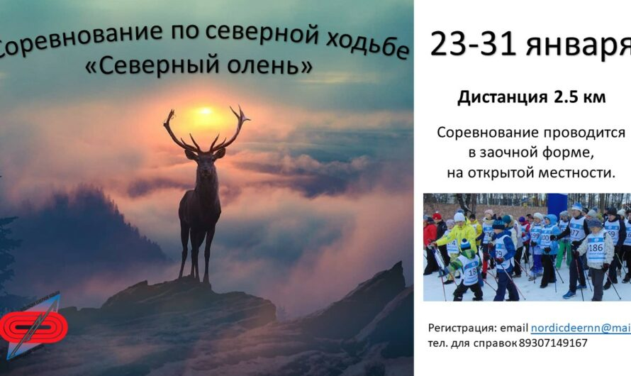 C 23 по 31 января 2021 года в Нижнем Новгороде пройдет заочный турнир «Северный Олень»!